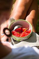 Fresh watermelon in a bowl
