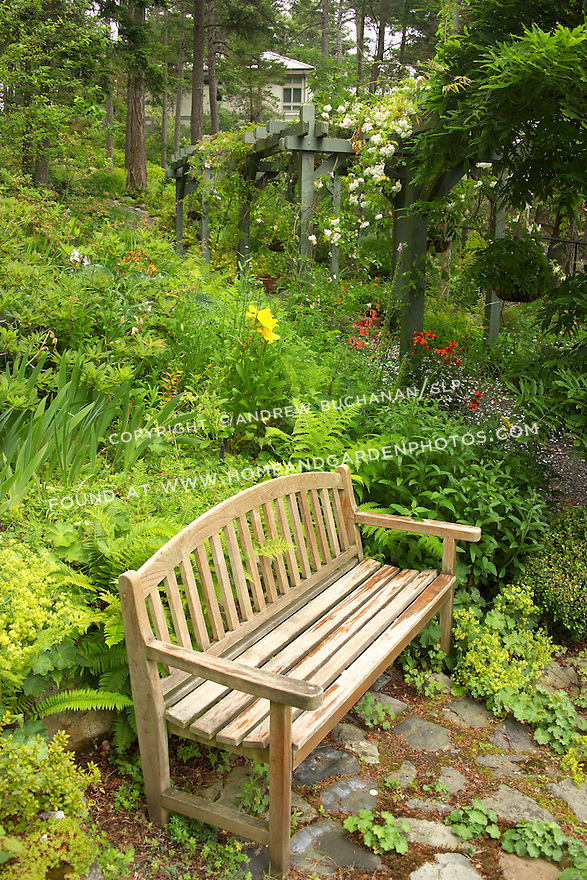 a wooden garedn bench sits aside a garden path that runs along the base of a hillside planted as a verdant woodland garden
