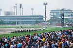 HONG KONG - MAY 04:  Riders compete during the Sheung Wan Handicap at Sha Tin racecourse on May 4, 2014 in Hong Kong, Hong Kong.  Photo by Aitor Alcalde / Power Sport Images