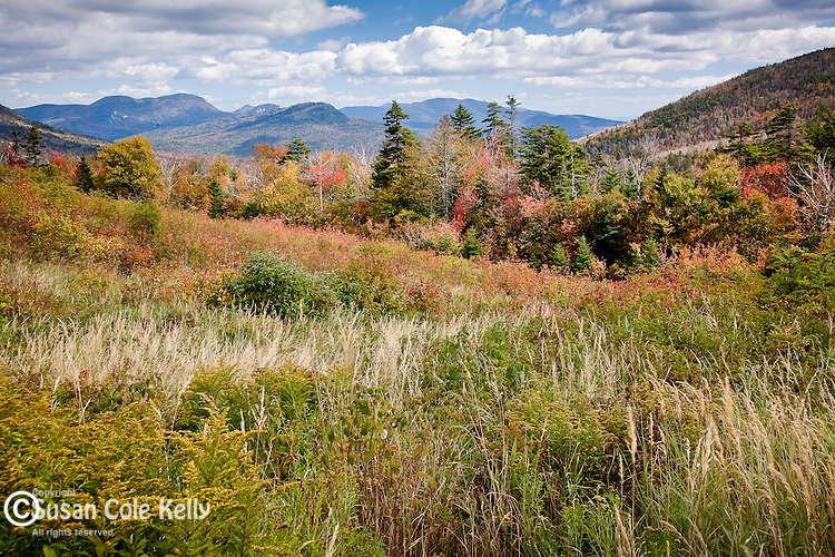 Fall colors the Kancamagus Pass in the White Mountain National Forest, NH