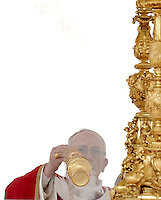 Papa Francesco celebra la messa per la Domenica delle Palme in Piazza San Pietro, Citta' del Vaticano, 24 marzo 2013..Pope Francis celebrates the Palm Sunday Mass in St. Peter's square at the Vatican, 24 March 2013..UPDATE IMAGES PRESS/Riccardo De Luca..STRICTLY ONLY FOR EDITORIAL USE