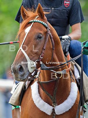 Belmont Park - Sat. June 2  2012