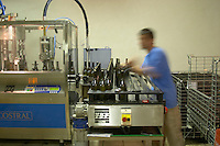 Bottling line. Domaine Pascal Jolivet, Sancerre, Loire, France