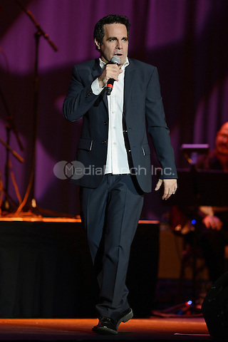HOLLYWOOD FL - OCTOBER 11 : Mario Cantone performs at Hard Rock live held at the Seminole Hard Rock hotel & Casino on October 11, 2012 in Hollywood, Florida. © mpi04/MediaPunch Inc.