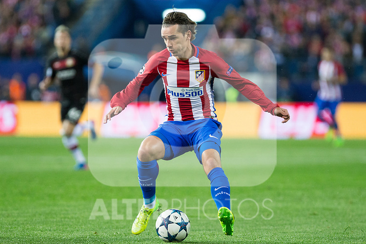 Antoine Griezmann of Atletico de Madrid during the match of Uefa Champions League between Atletico de Madrid and Bayer Leverkusen at Vicente Calderon Stadium  in Madrid, Spain. March 15, 2017. (ALTERPHOTOS / Rodrigo Jimenez)