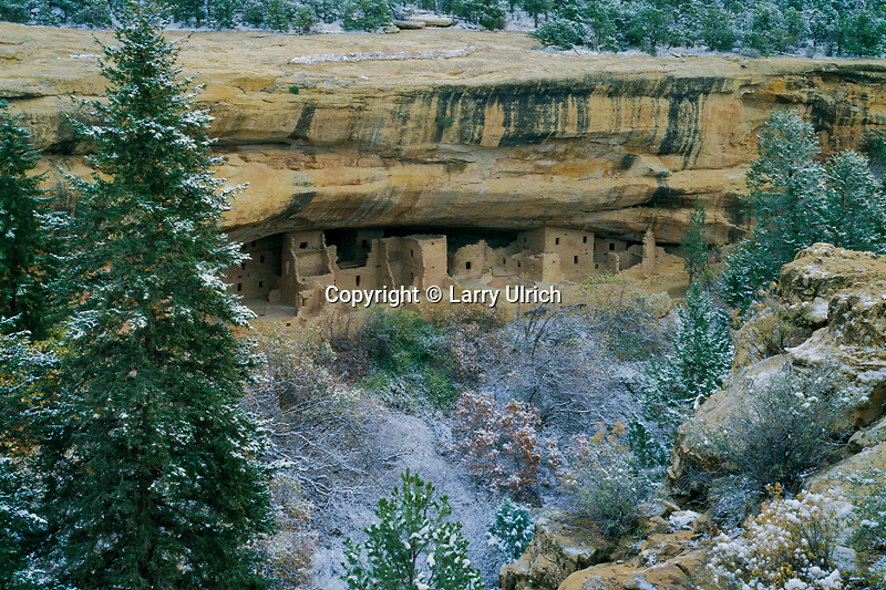 Spruce Tree House<br />