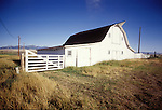White barn and gate in central Montana, summer.