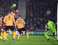23rd November 2019; Vitality Stadium, Bournemouth, Dorset, England; English Premier League Football, Bournemouth Athletic versus Wolverhampton Wanderers; Steve Cook of Bournemouth heads the corner kick to score in 59th minute 1-2 - Strictly Editorial Use Only. No use with unauthorized audio, video, data, fixture lists, club/league logos or 'live' services. Online in-match use limited to 120 images, no video emulation. No use in betting, games or single club/league/player publications