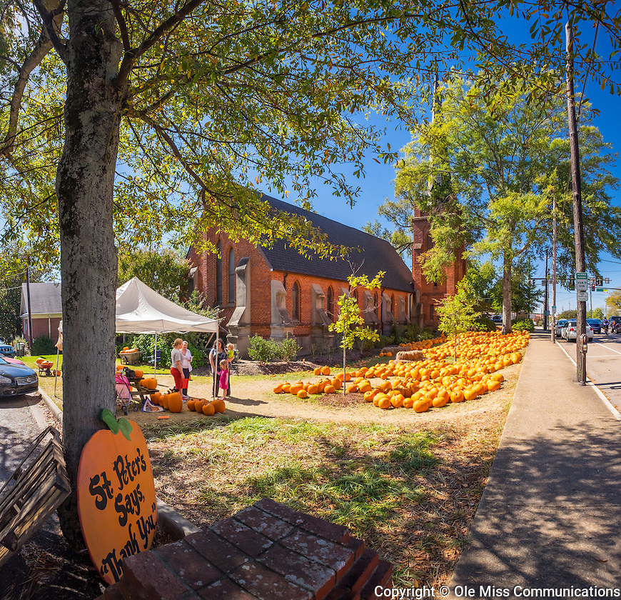 Halloween is just around the corner and St. Peters has plenty of pumpkins for sale. Photo by Robert Jordan/Ole Miss Communications