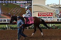 DEL MAR, CA  JULY 16: Jockey Drayden Van Dyke and She's Not Here, watch the replay of the finish of the Yellow Ribbon Handicap (GII) while waiting for the result to become official at Del Mar Turf Club in Del Mar, CA on July 16, 2016. (Photo by Casey Phillips/Eclipse Sportswire/Getty ImagesDEL MAR, CA  JULY 16: (Photo by Casey Phillips/Eclipse Sportswire/Getty Images
