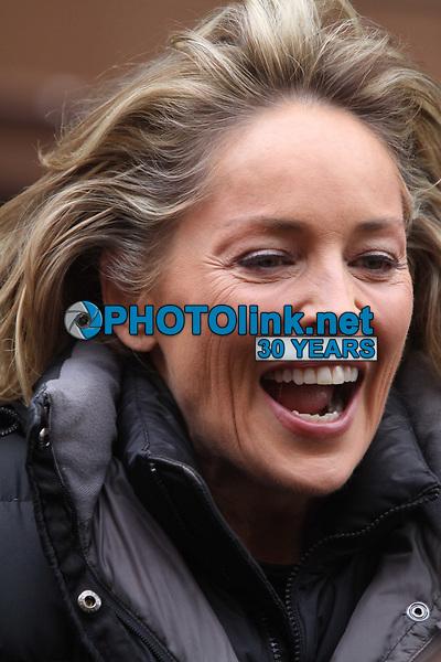 Sharon Stone 2010<br /> Photo By John Barrett/PHOTOlink.net