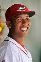 Jose Almonte (29) of the Greenville Drive is pictured in the dugout during a game against the Lakewood BlueClaws on Sunday, June 26, 2016, at Fluor Field at the West End in Greenville, South Carolina. Greenville won, 2-1. (Tom Priddy/Four Seam Images)