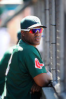 Designated hitter Carlos Mesa (28) of the Greenville Drive watches the action from the dugout during a game against the Charleston RiverDogs on Sunday, June 28, 2015, at Fluor Field at the West End in Greenville, South Carolina. Charleston won, 12-9. (Tom Priddy/Four Seam Images)