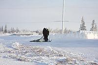 01874-11714 Polar Bear (Ursus maritimus) biologists preparing to airlift bear from Polar Bear Compound, Churchill MB