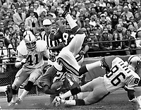 Oakland Raiders upend Vikings runner Oscar Reed  #23  by Phsil Villapiano, and Gerald Irons. (1973 photo/Ron Riesterer)