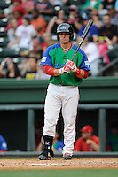 Catcher Jordan Procyshen (17) of the Greenville Drive bats in a game against the Augusta GreenJackets on Sunday, April 12, 2015, at Fluor Field at the West End in Greenville, South Carolina. Augusta won, 2-1. (Tom Priddy/Four Seam Images)