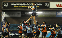 Cardiff Blues&rsquo; Macauley Cook claims the line out<br /> <br /> Photographer Kevin Barnes/CameraSport<br /> <br /> Guinness Pro14  Round 14 - Cardiff Blues v Toyota Cheetahs - Saturday 10th February 2018 - Cardiff Arms Park - Cardiff<br /> <br /> World Copyright &copy; 2018 CameraSport. All rights reserved. 43 Linden Ave. Countesthorpe. Leicester. England. LE8 5PG - Tel: +44 (0) 116 277 4147 - admin@camerasport.com - www.camerasport.com
