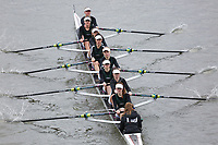 Crew: 103   Surbiton High School Boat Club   Intermediate<br /> <br /> Women's Eights Head of the River (WEHoRR) 2018<br /> <br /> To purchase this photo, or to see pricing information for Prints and Downloads, click the blue 'Add to Cart' button at the top-right of the page.