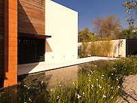 The white path from the gate to the front door of this modern house skirts around a rectangular pond