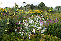 Mature summer border at Great Dixter