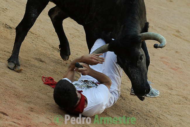 A cow takes a runner after San Fermin Festival bull run, on July 13, 2012, in Pamplona, northern Spain. The festival is a symbol of Spanish culture that attracts thousands of tourists to watch the bull runs despite heavy condemnation from animal rights groups . (c) Pedro ARMESTRE