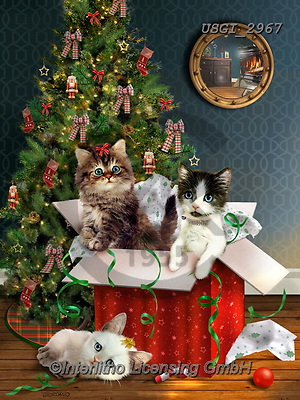 GIORDANO, CHRISTMAS ANIMALS, WEIHNACHTEN TIERE, NAVIDAD ANIMALES, paintings+++++,USGI2967,#xa# ,cats,