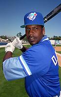 Toronto Blue Jays Domingo Martinez during Spring Training 1993 at Charlotte Sports Park in Port Charlotte, Florida.  (MJA/Four Seam Images)