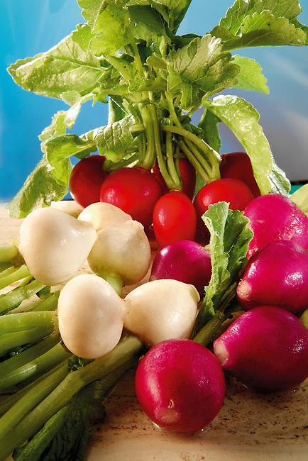 Fresh red and white radish food photography