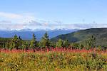 SUMMIT PASS ON #97 (ALASKA HIGHWAY), BC, CANADA