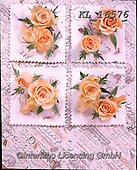 Interlitho-Alberto, FLOWERS, BLUMEN, FLORES, photos+++++,yellow roes, parchment,KL16576,#f#, EVERYDAY ,rose,roses ,napkin,napkins,