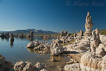 Tufa formations on the shore of Mono Lake, looking southeast toward distant view of Mono Craters, California, USA