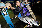 """Fishermen unload a 100-kg Pacific bluefun tuna from a boat at Oma Port,  northern Japan on 23 September 2008. Oma, a town that has long been synonymous with high-quality tuna in Japan, is having to come to grips with depleting stocks of tuna in nearby waters and a battle that pits """"ippon-zuri"""", or single-line, fishermen against long-line fishing fleets in the area. .Photographer: Robert Gilhooly"""