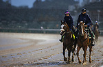 September 3, 2020:  Tiz the Law is ponied by trainer Barclay Tagg, as horses prepare for the 2020 Kentucky Derby and Kentucky Oaks at Churchill Downs in Louisville, Kentucky. The race is being run without fans due to the coronavirus pandemic that has gripped the world and nation for much of the year. Evers/Eclipse Sportswire/CSM