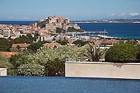 Europe/France/2B/Haute Corse/Balagne/Calvi: La Citadelle et le port vus depuis la terrasse  et la piscine de l' Hôtel: La Villa