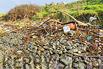 Rubbish and waste at the site of a major clean up in the Tralee Wetlands, that will take place today Thursday.