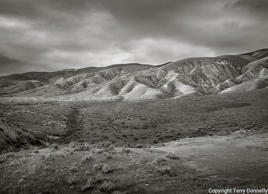 Carrizo Plain National Monument, California:<br /> Rolling foothills of the Tremblor Range, storm clouds