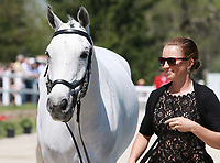 LEXINGTON, KY - April 26, 2017. #67 Bentley's Best and Jessica Phoenix from Canada at the Rolex Three Day Event First Horse Inspection at the Kentucky Horse Park.  Lexington, Kentucky. (Photo by Candice Chavez/Eclipse Sportswire/Getty Images)