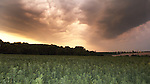 Storm Clouds over farmland, Hoath, Nr Canterbury, KENT UK, 17th July 2014
