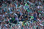 Stockholm 2013-06-23 Fotboll Superettan , Hammarby IF - &Auml;ngelholms FF :  <br /> Hammarby Bajen fans publik supporters p&aring; Norra l&auml;ktaren<br /> (Foto: Kenta J&ouml;nsson) Nyckelord:  supporter fans publik supporters