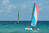 BTMI Campaign, Barbados