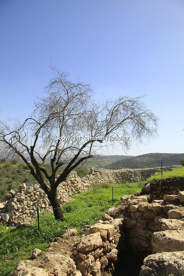 Israel, Shephelah, Haelah fortress at Khirbet Qeiyafa overlooking Haelah valley