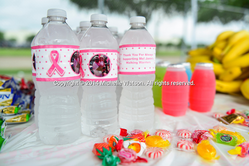American Cancer Society Gulf Coast Region Making Strides 5k at NRG Park