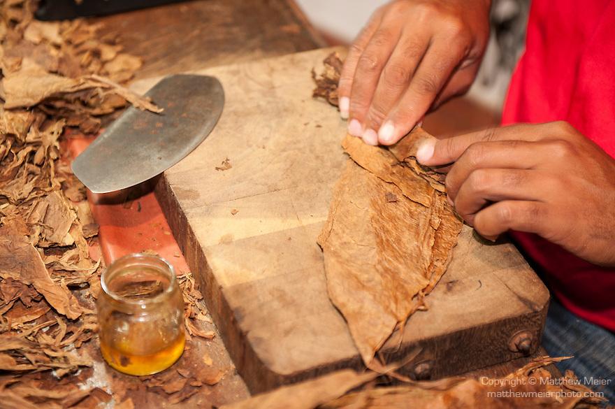 Havana, Cuba; a man rolls Cuban cigars at Ron's Tabaco Cafe in the Fortaleza de San Carlos de la Cabana