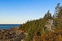 Coastal landscape, Lubec, Maine, USA