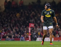 South Africa&rsquo;s Cheslin Kolbe during the game <br /> <br /> Photographer Ian Cook/CameraSport<br /> <br /> Under Armour Series Autumn Internationals - Wales v South Africa - Saturday 24th November 2018 - Principality Stadium - Cardiff<br /> <br /> World Copyright &copy; 2018 CameraSport. All rights reserved. 43 Linden Ave. Countesthorpe. Leicester. England. LE8 5PG - Tel: +44 (0) 116 277 4147 - admin@camerasport.com - www.camerasport.com