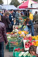 Shoppers at farmers market selling fresh seasonal vegetables.  Rawa Mazowiecka  Central Poland