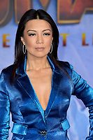 """LOS ANGELES, USA. December 10, 2019: Ming-Na Wen at the world premiere of """"Jumanji: The Next Level"""" at the TCL Chinese Theatre.<br /> Picture: Paul Smith/Featureflash"""