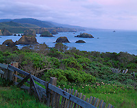 Mendocino County, CA<br /> Weathered wooden fence on a hillside overlooking seastacks in Greenwood Cove near Cuffeys Point at dusk on California's North Coast