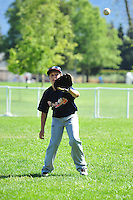 PNLL AAA Braves action 2015. (Photo by AGP Photography)