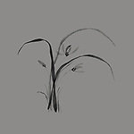 Floral Japanese Zen ink painting artwork design of flowers of wild orchids with leaves illustration black on gray background Image © MaximImages, License at https://www.maximimages.com